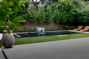Terrace Lawn and Pool